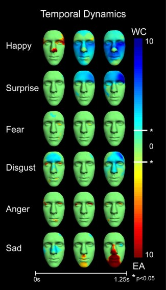 perception of facial expression